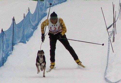 スキージョアリング