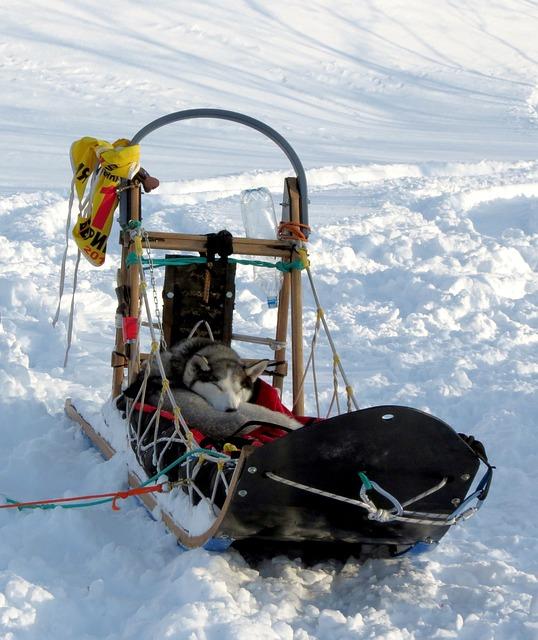 長距離用の橇