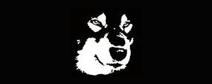犬ぞりワールド 魔法のしっぽ